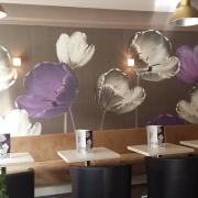 Falknow CAFE
