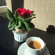 Caffé Jezárky
