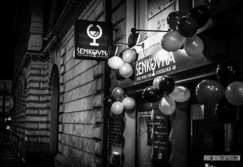 Šenkovna Pub