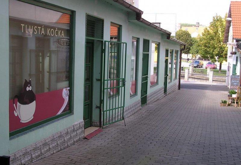 Kavárna Tlustá kočka